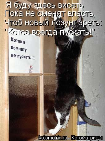 """Котоматрица: Я буду здесь висеть Пока не сменят власть, Чтоб новый лозунг зреть: """"Котов всегда пускать!"""""""