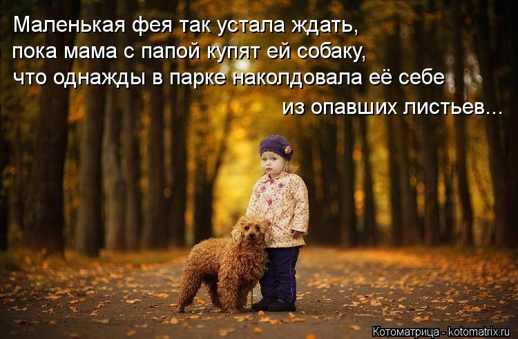 Котоматрица: Маленькая фея так устала ждать,  пока мама с папой купят ей собаку, что однажды в парке наколдовала её себе из опавших листьев...
