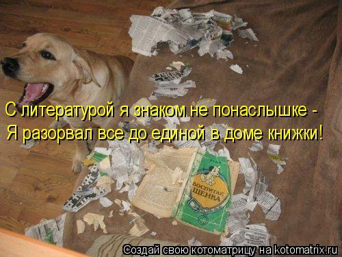 Котоматрица: С литературой я знаком не понаслышке - Я разорвал все до единой в доме книжки!
