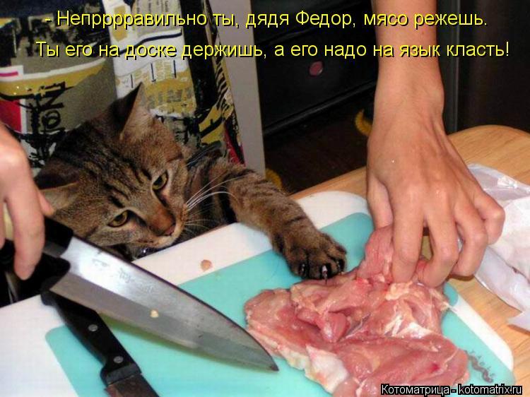Котоматрица: - Непрррравильно ты, дядя Федор, мясо режешь. Ты его на доске держишь, а его надо на язык класть!
