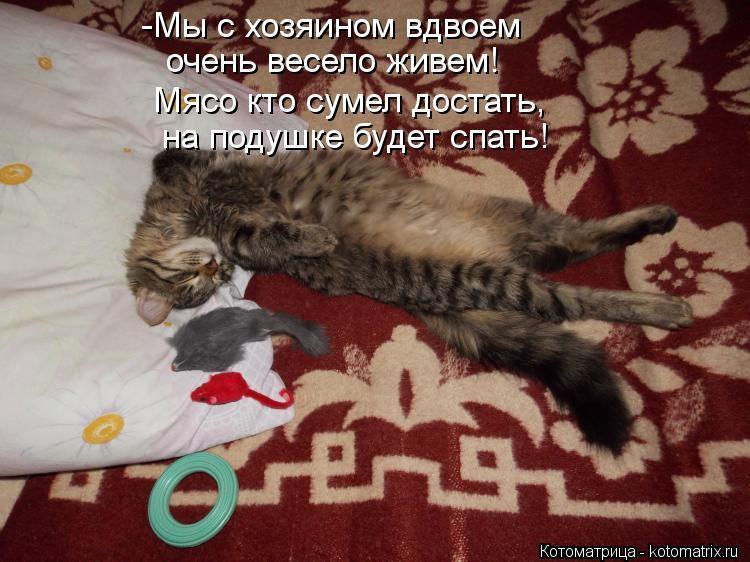 Котоматрица: -Мы с хозяином вдвоем  очень весело живем! Мясо кто сумел достать,   на подушке будет спать!