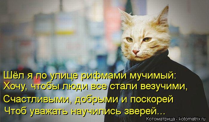 Котоматрица: Хочу, чтобы люди все стали везучими, Счастливыми, добрыми и поскорей Чтоб уважать научились зверей... Шёл я по улице рифмами мучимый: