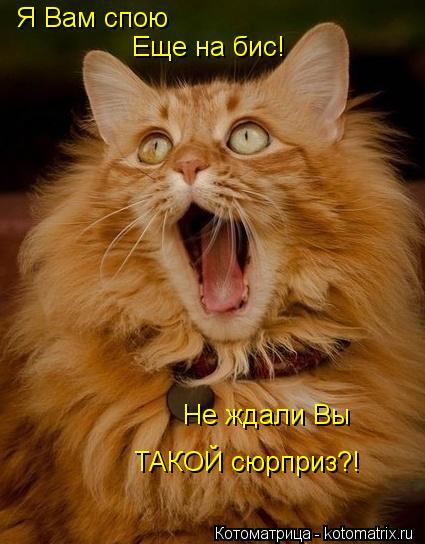 Котоматрица: Я Вам спою Еще на бис! Не ждали Вы ТАКОЙ сюрприз?!