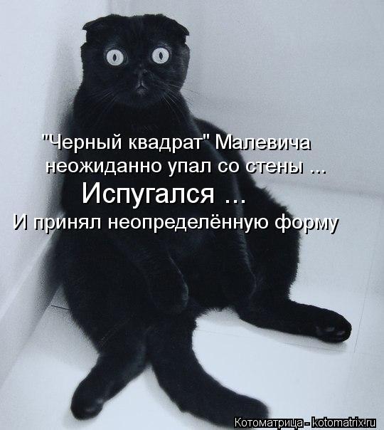 """Котоматрица: """"Черный квадрат"""" Малевича неожиданно упал со стены ... Испугался ... И принял неопределённую форму"""