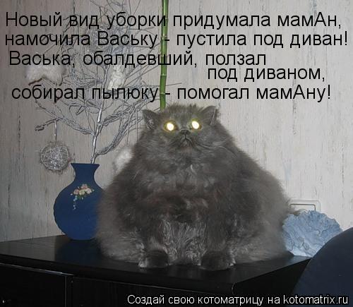 Котоматрица: Новый вид уборки придумала мамАн, намочила Ваську - пустила под диван! Васька, обалдевший, ползал под диваном, собирал пылюку - помогал мамАн