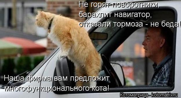 Котоматрица: Не горят поворотники, барахлит навигатор, отказали тормоза - не беда! Наша фирма вам предложит многофункционального кота!