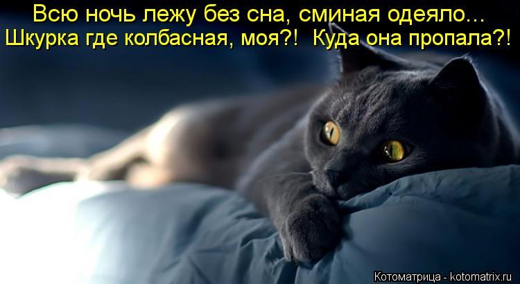 Котоматрица: Всю ночь лежу без сна, сминая одеяло... Шкурка где колбасная, моя?!  Куда она пропала?!