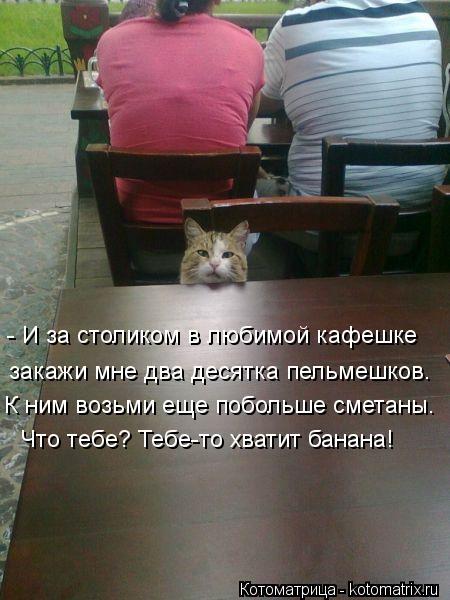 Котоматрица: - И за столиком в любимой кафешке закажи мне два десятка пельмешков. К ним возьми еще побольше сметаны. Что тебе? Тебе-то хватит банана!