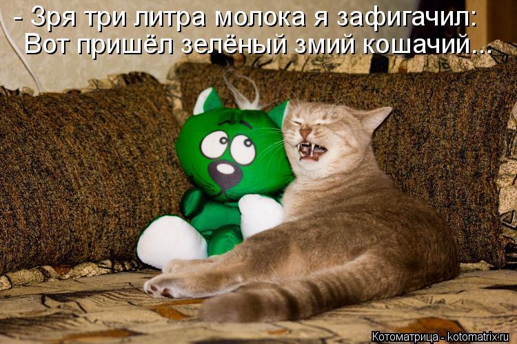 Котоматрица: - Зря три литра молока я зафигачил: Вот пришёл зелёный змий кошачий...
