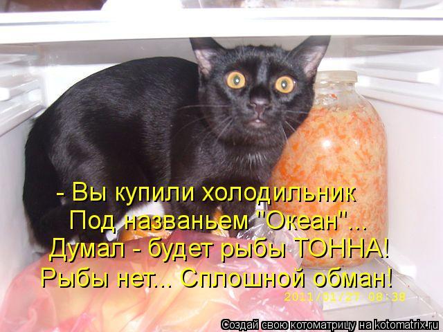 """Котоматрица: - Вы купили холодильник Под названьем """"Океан""""... Думал - будет рыбы ТОННА! Рыбы нет... Сплошной обман!"""