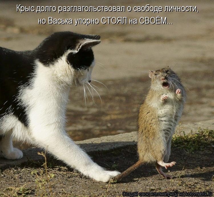 Котоматрица: Крыс долго разглагольствовал о свободе личности,  но Васька упорно СТОЯЛ на СВОЁМ...