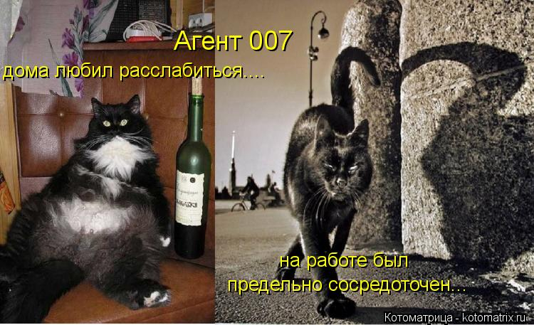 Котоматрица: Агент 007  дома любил расслабиться.... на работе был предельно сосредоточен...