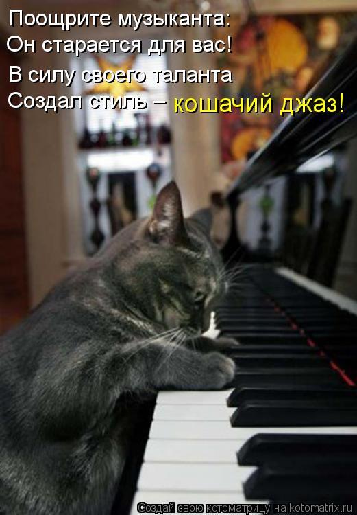 Котоматрица: Поощрите музыканта:   Он старается для вас!                          Создал стиль –                 кошачий джаз!              В силу своего таланта