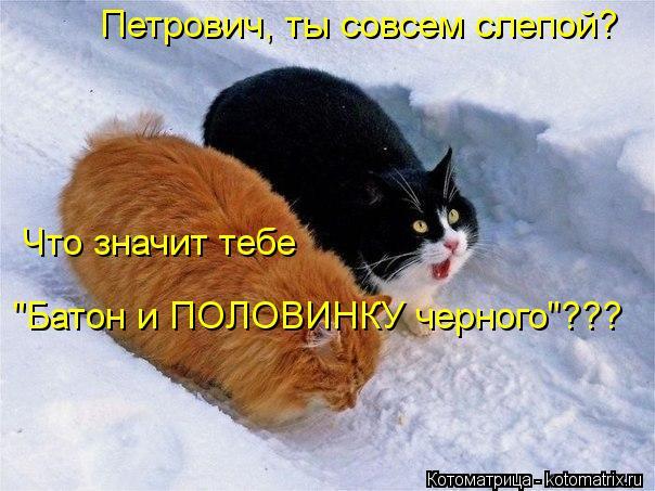"""Котоматрица: Петрович, ты совсем слепой? Что значит тебе """"Батон и ПОЛОВИНКУ черного""""???"""