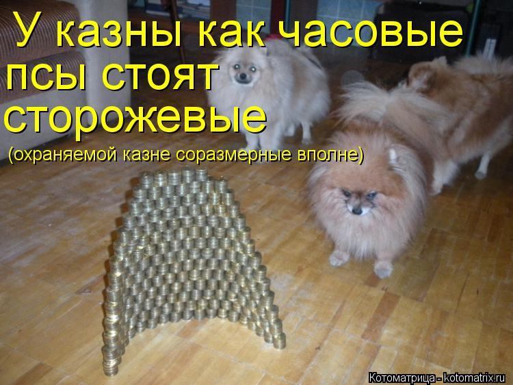 Котоматрица: У казны как часовые псы стоят сторожевые (охраняемой казне соразмерные вполне)
