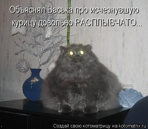 Котоматрица: Объяснял Васька про исчезнувшую  курицу довольно РАСПЛЫВЧАТО...