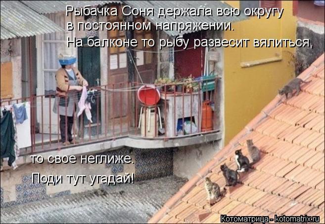 Котоматрица: Рыбачка Соня держала всю округу в постоянном напряжении. На балконе то рыбу развесит вялиться, то свое неглиже. Поди тут угадай!