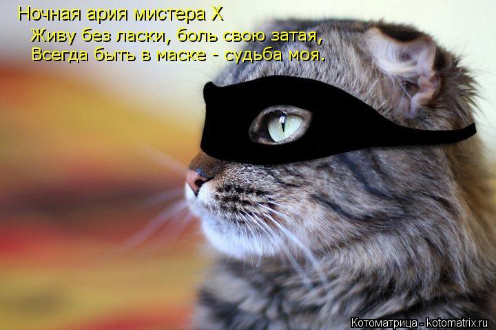 Котоматрица: Живу без ласки, боль свою затая,  Всегда быть в маске - судьба моя. Ночная ария мистера X
