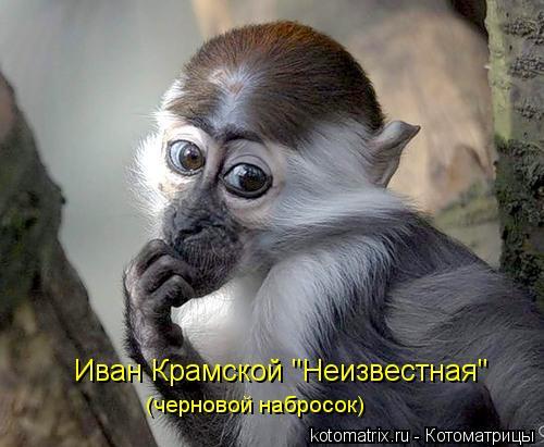 """Котоматрица: Иван Крамской """"Неизвестная"""" (черновой набросок)"""