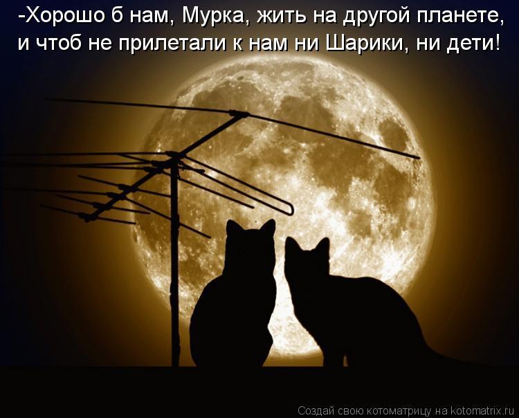 Котоматрица: -Хорошо б нам, Мурка, жить на другой планете, и чтоб не прилетали к нам ни Шарики, ни дети!