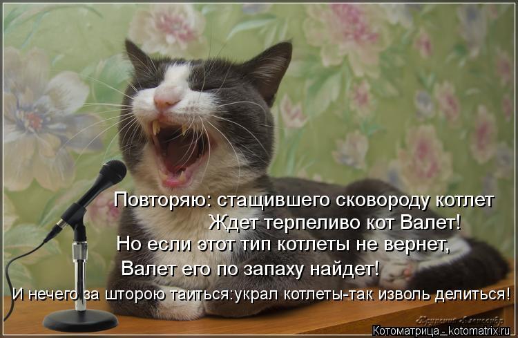 Котоматрица: Повторяю: стащившего сковороду котлет Ждет терпеливо кот Валет! Но если этот тип котлеты не вернет, Валет его по запаху найдет! И нечего за ш