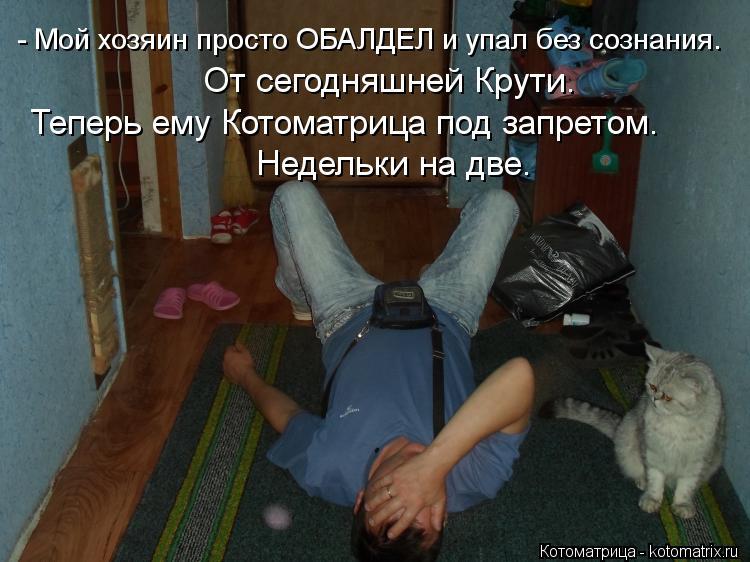 Котоматрица: - Мой хозяин просто ОБАЛДЕЛ и упал без сознания. От сегодняшней Крути. Теперь ему Котоматрица под запретом. Недельки на две.