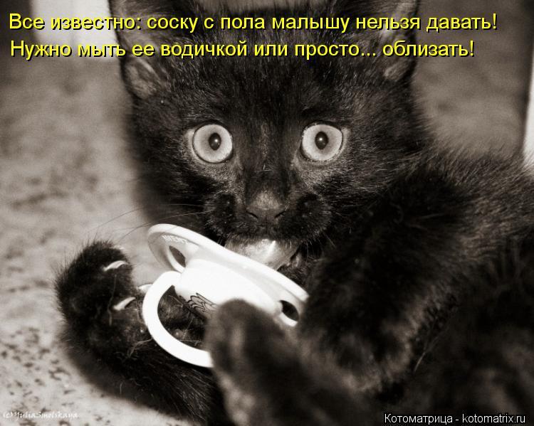 Котоматрица: Все известно: соску с пола малышу нельзя давать! Нужно мыть ее водичкой или просто... облизать!