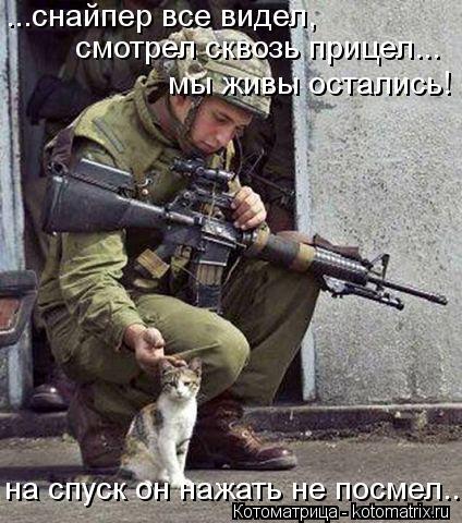 Котоматрица: ...снайпер все видел,  смотрел сквозь прицел... мы живы остались! на спуск он нажать не посмел...