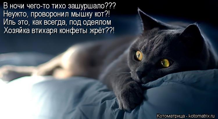 Котоматрица: В ночи чего-то тихо зашуршало??? Неужто, проворонил мышку кот?! Иль это, как всегда, под одеялом Хозяйка втихаря конфеты жрёт??!