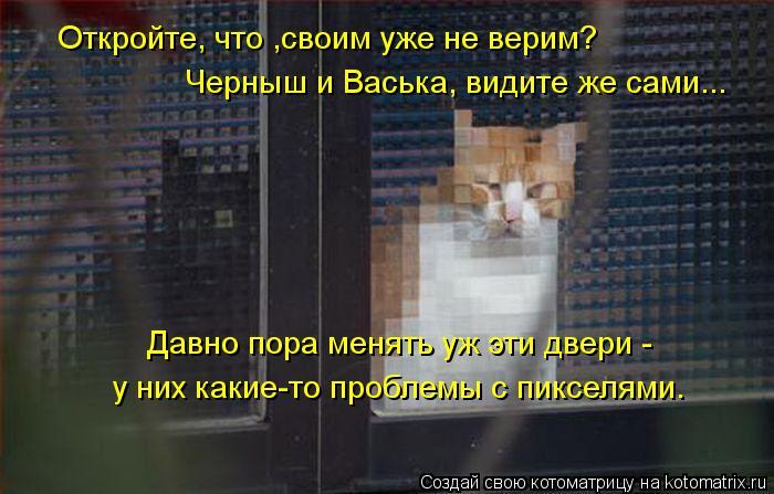 Котоматрица: Откройте, что ,своим уже не верим? Черныш и Васька, видите же сами... Давно пора менять уж эти двери - у них какие-то проблемы с пикселями.