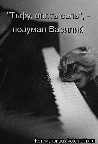 """Котоматрица: """"Тьфу, опять соль"""", - подумал Василий"""