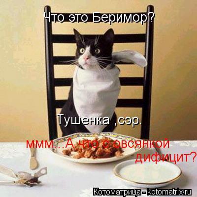 Котоматрица: Что это Беримор? Тушенка ,сэр. ммм...А что с овсянкой дифицит?