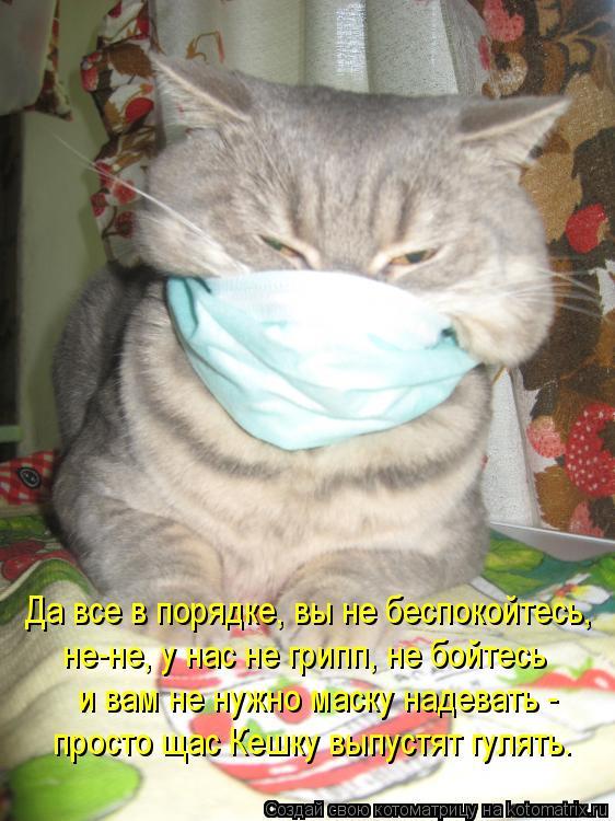Котоматрица: Да все в порядке, вы не беспокойтесь, не-не, у нас не грипп, не бойтесь и вам не нужно маску надевать - просто щас Кешку выпустят гулять.