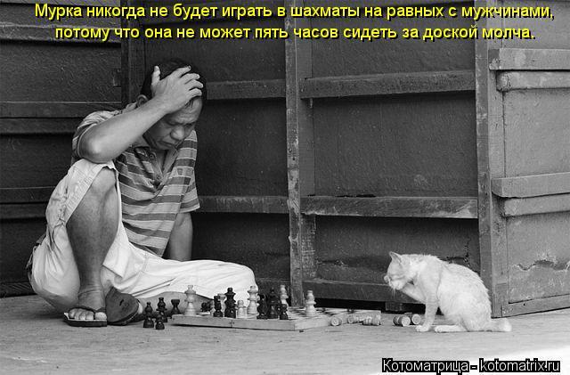 Котоматрица: Мурка никогда не будет играть в шахматы на равных с мужчинами,  потому что она не может пять часов сидеть за доской молча.