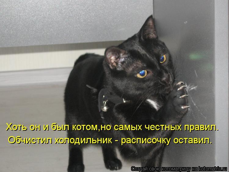 Котоматрица: Хоть он и был котом,но самых честных правил. Обчистил холодильник - расписочку оставил.