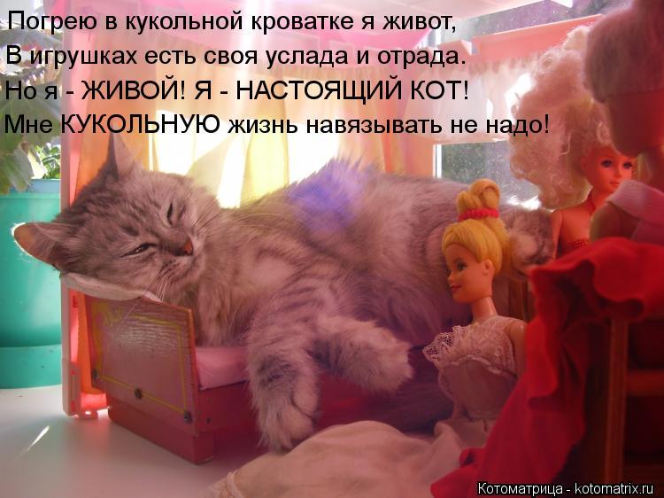 Котоматрица: Погрею в кукольной кроватке я живот, В игрушках есть своя услада и отрада. Но я - ЖИВОЙ! Я - НАСТОЯЩИЙ КОТ! Мне КУКОЛЬНУЮ жизнь навязывать не н