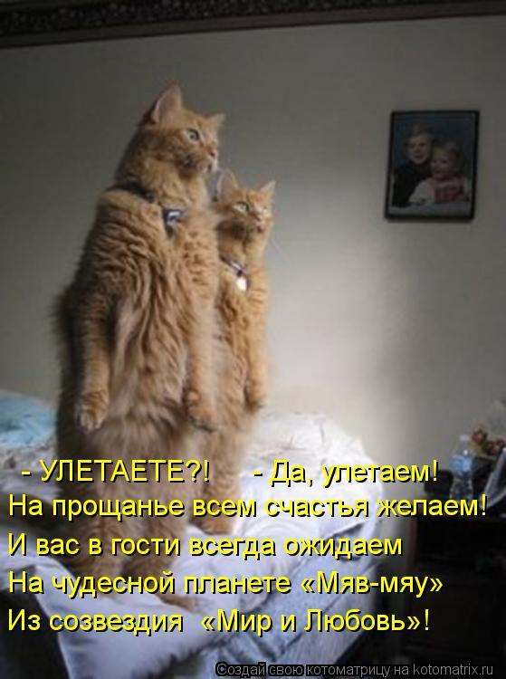 Котоматрица: - УЛЕТАЕТЕ?!     - Да, улетаем!  На прощанье всем счастья желаем! И вас в гости всегда ожидаем На чудесной планете «Мяв-мяу»  Из созвездия  «Мир и