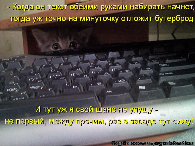 kotomatritsa_0F.jpg