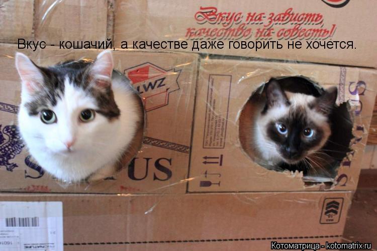 Котоматрица: Вкус - кошачий, а качестве даже говорить не хочется.
