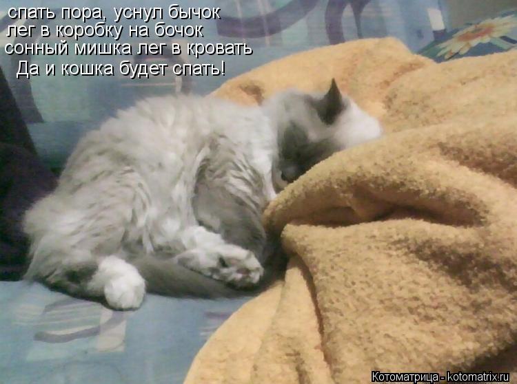 Котоматрица: спать пора, уснул бычок лег в коробку на бочок сонный мишка лег в кровать Да и кошка будет спать!