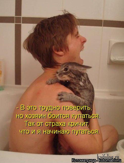 Котоматрица: - В это трудно поверить,  но хозяин боится купаться.  Так от страха кричит,  что и я начинаю пугаться.