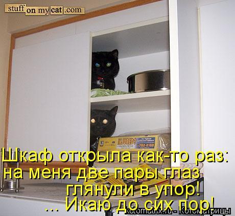 Котоматрица: Шкаф открыла как-то раз: на меня две пары глаз глянули в упор! ... Икаю до сих пор!