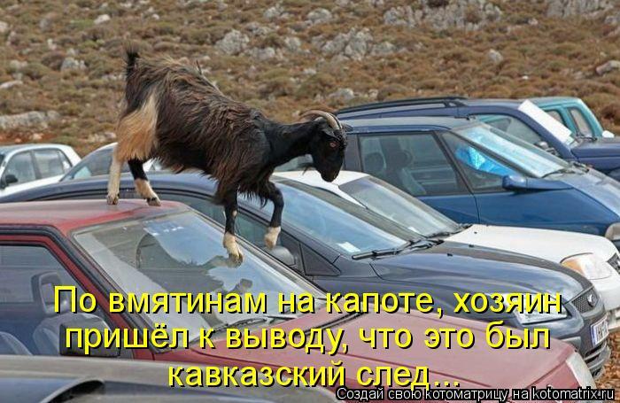 Котоматрица: По вмятинам на капоте, хозяин пришёл к выводу, что это был кавказский след...