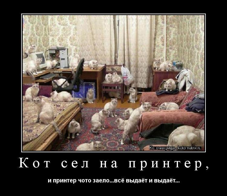 Котоматрица: Кот сел на принтер, и принтер чото заело...всё выдаёт и выдаёт...