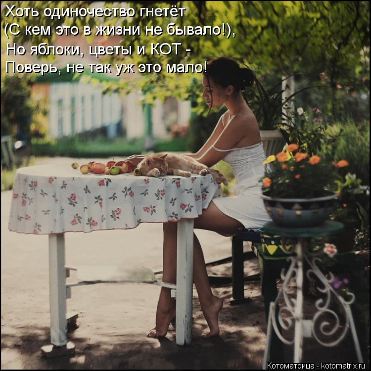 Котоматрица: Хоть одиночество гнетёт (С кем это в жизни не бывало!), Но яблоки, цветы и КОТ - Поверь, не так уж это мало!