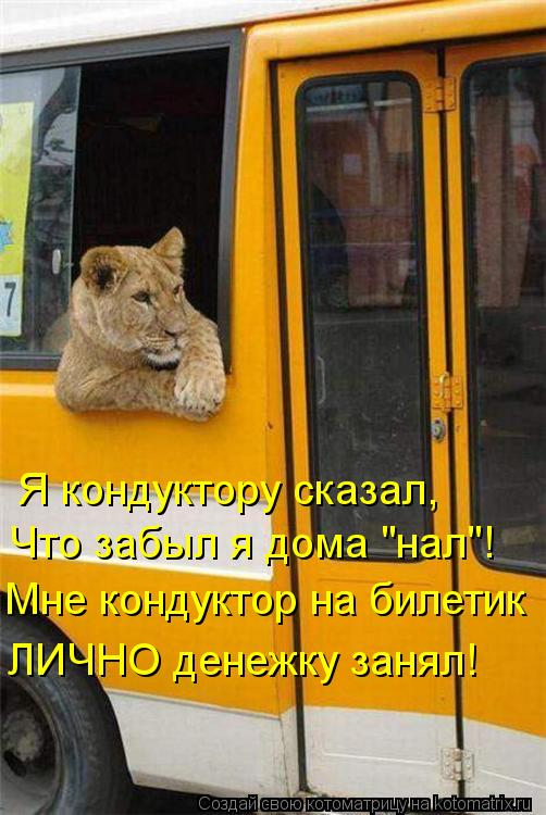 """Котоматрица: Я кондуктору сказал, Что забыл я дома """"нал""""! Мне кондуктор на билетик ЛИЧНО денежку занял!"""