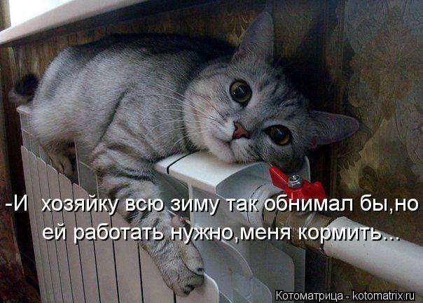Котоматрица: -И  хозяйку всю зиму так обнимал бы,но  ей работать нужно,меня кормить...