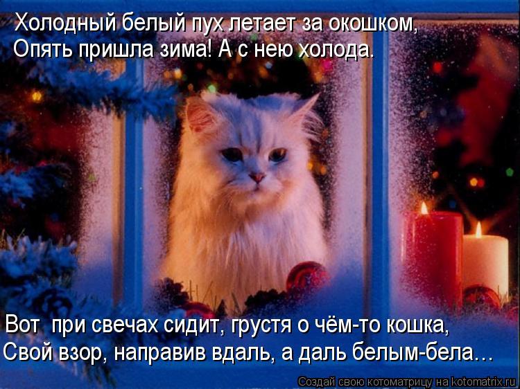 Котоматрица: Холодный белый пух летает за окошком, Опять пришла зима! А с нею холода. Вот  при свечах сидит, грустя о чём-то кошка, Свой взор, направив вдал