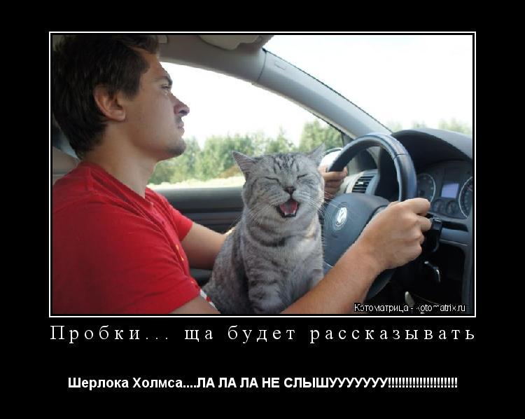 Котоматрица: Пробки... ща будет рассказывать Шерлока Холмса....ЛА ЛА ЛА НЕ СЛЫШУУУУУУУ!!!!!!!!!!!!!!!!!!!!