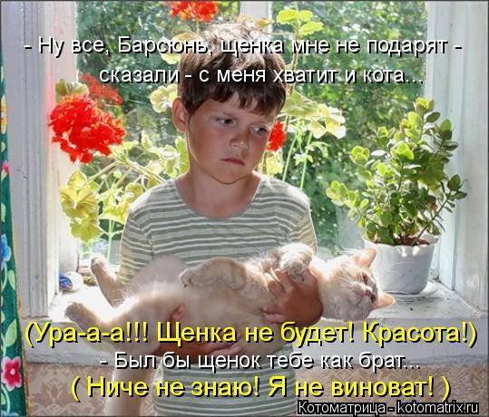Котоматрица: - Ну все, Барсюнь, щенка мне не подарят - сказали - с меня хватит и кота... ( Ниче не знаю! Я не виноват! ) (Ура-а-а!!! Щенка не будет! Красота!) - Был бы
